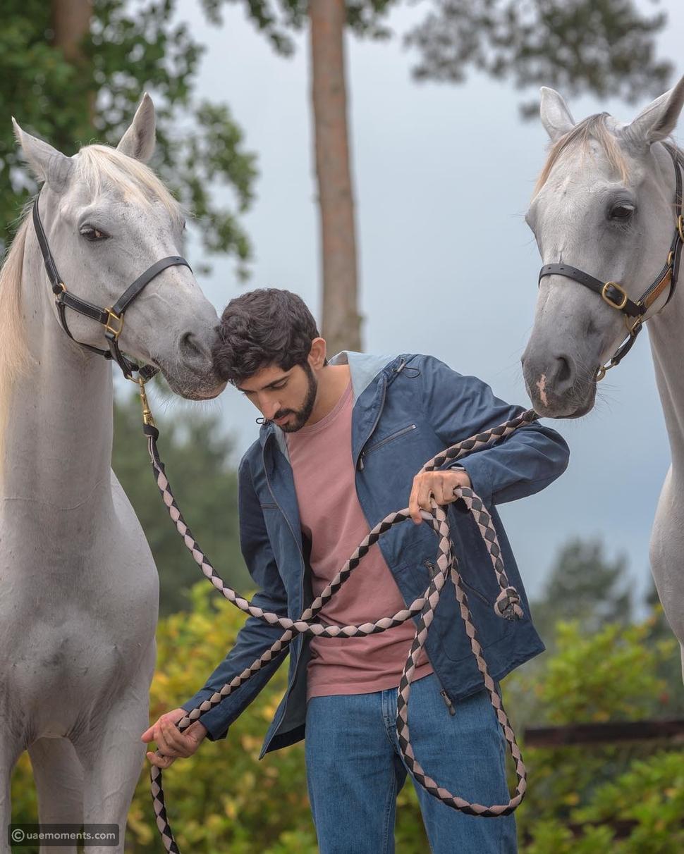 UAE Royals: Get to Know Sheikh Hamdan's Horses
