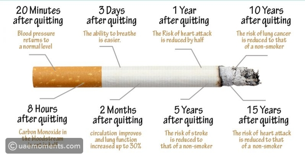 What Happens The Moment You Quit Smoking. Step by Step