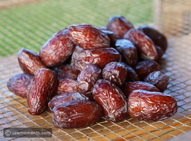10 types of dates you can find in the middle east